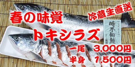 Tokibana001